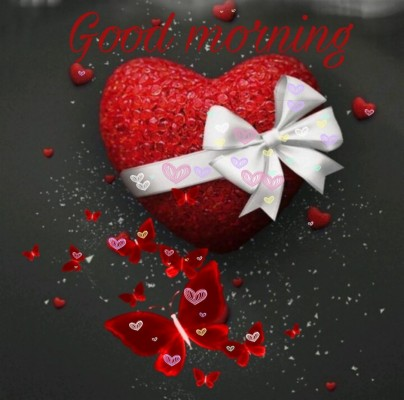 0 4805 good morning love images nature love good morning