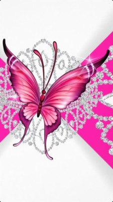 Download Butterfly Wallpapers And Backgrounds Teahub Io
