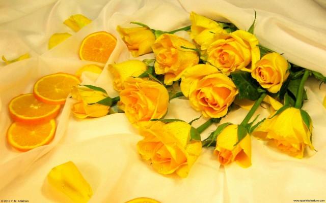 Yellow Aesthetic Png Aesthetics Desktop Wallpaper Clipart Aesthetic Flowers Drawing 900x900 Wallpaper Teahub Io