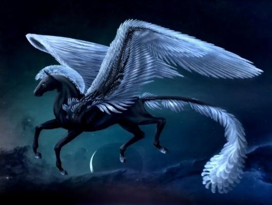 112 1129547 pegasus wallpaper and background image id316277 fantasy pegasus