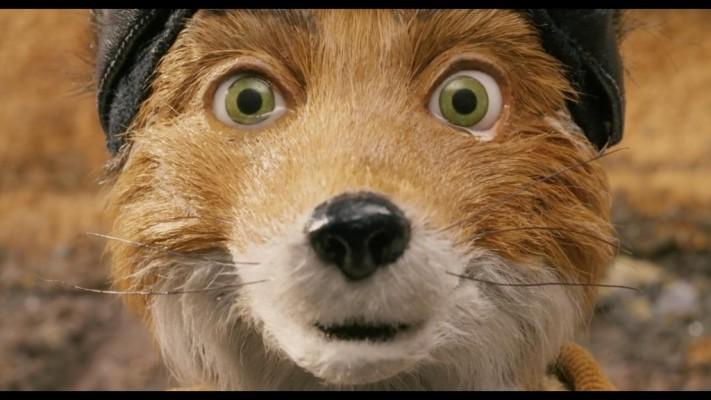 Badger Fantastic Mr Fox Characters 1920x1080 Wallpaper Teahub Io