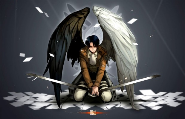 Attack On Titan Logo Hd Wallpaper Wings Of Freedom Logo 1680x1050 Wallpaper Teahub Io