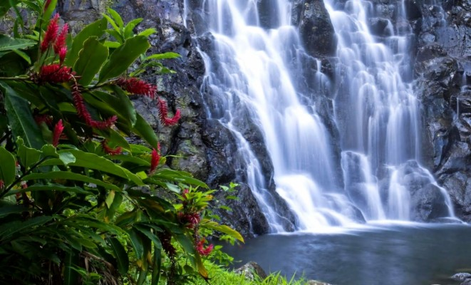 Download Nature Desktop Wallpapers And Backgrounds Teahub Io