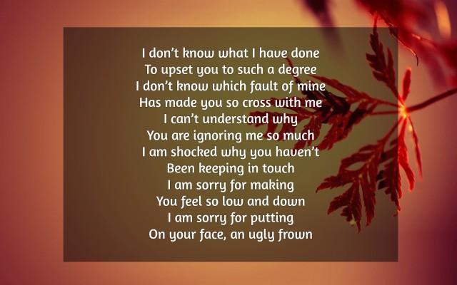 Sorry to my wife poem