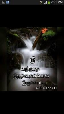 Bible Vasanam In Tamil 736x736 Wallpaper Teahub Io