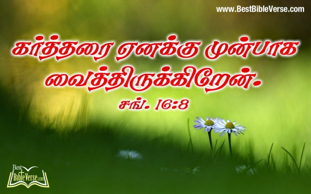 Download Tamil Bible Words Hd Wallpaper Gallery Modern Jesus Bible Words In Tamil 1600x1000 Wallpaper Teahub Io