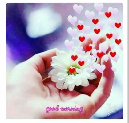 Good Morning Kannada Kavanagalu Images The Best Hd Gud Mrng Wishes 720x687 Wallpaper Teahub Io