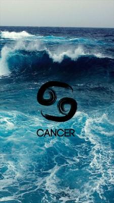 Cancer Wallpaper Crab Zodiac Iphone 640x960 Wallpaper Teahub Io