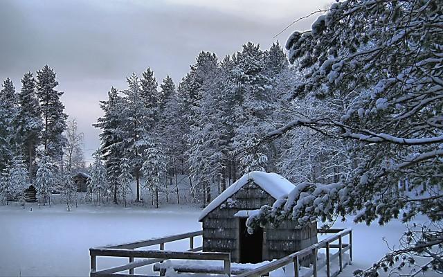 Beautiful Winter Scenes Desktop Wallpaper Beautiful Winter Background 2560x1600 Wallpaper Teahub Io
