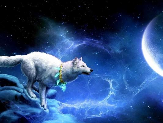 178 1780925 blue galaxy with wolf