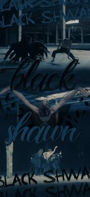 185 1853537 bts black swan