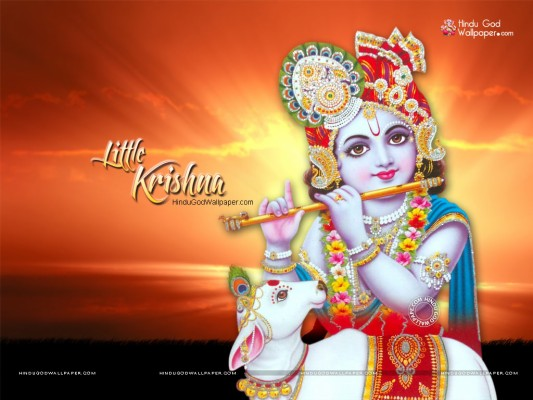 the bhagavad gita in pictures lord krishna and bhishma pitamah 880x621 wallpaper teahub io lord krishna and bhishma pitamah