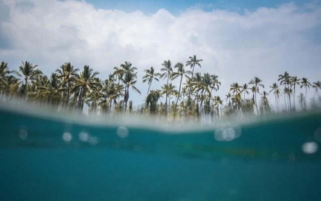 Hawaii Windsurf And Beach Surfing Hawaii Aesthetic 640x799 Wallpaper Teahub Io