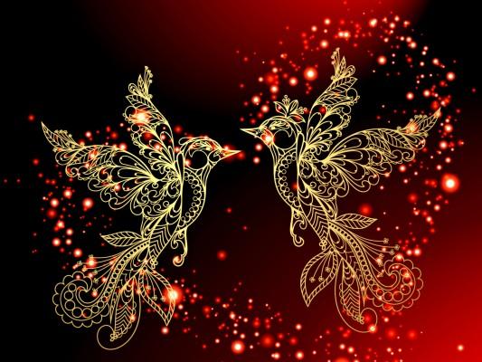 Love Birds Images Download 2560x1600 Wallpaper Teahub Io