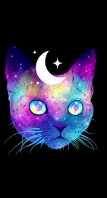 Cat Phone Background 1160x2170 Wallpaper Teahub Io