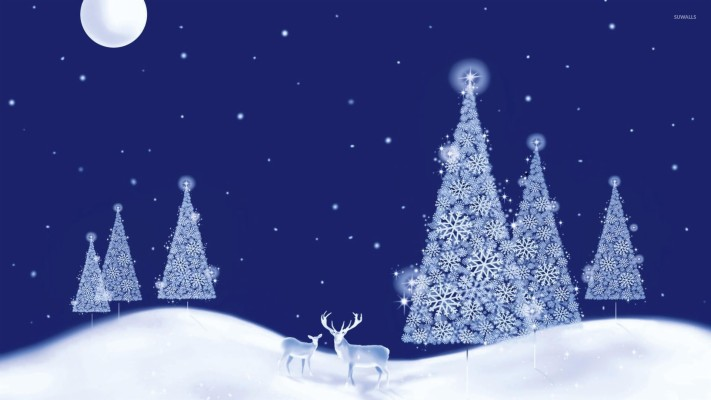 206 2063588 glowing white christmas trees on a beautiful winter