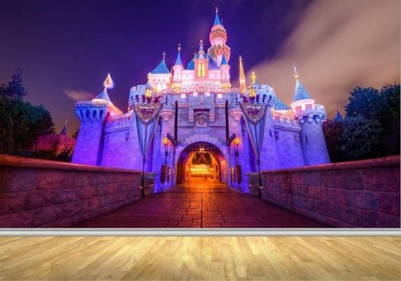 Disneyland Castle At Night Hd 1600x1120 Wallpaper Teahub Io