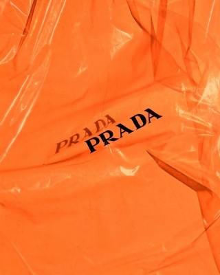 262 2622626 aesthetic orange fashion