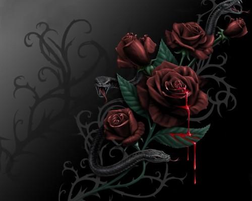 274 2740464 bleeding roses