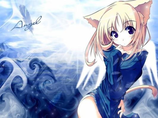 Anime Girl And Her Cat 1920x1200 Wallpaper Teahub Io