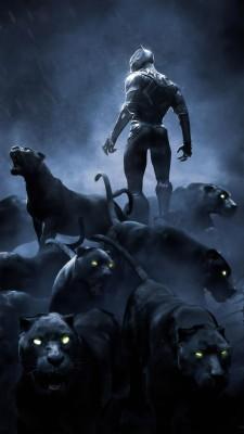 Black Panther Movie Black Panther Movie Hd 1080x729 Wallpaper Teahub Io