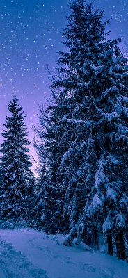 Iphone Wallpaper 4k Winter 1080x1921 Wallpaper Teahub Io