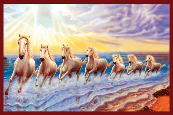 Seven Horses Hd Wallpaper 7 White Horse Wallpaper Hd Download 1024x1024 Wallpaper Teahub Io