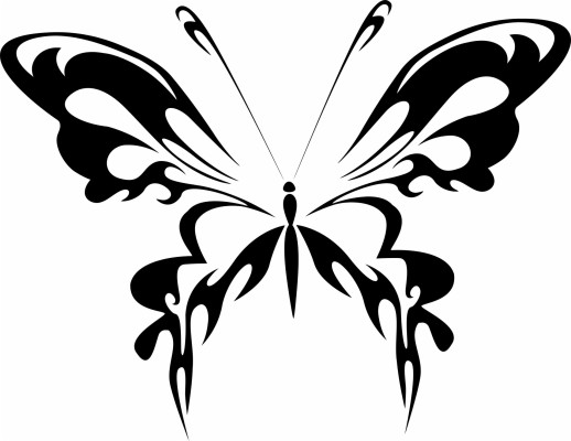 Black Silhouette Of A Butterfly On A White Background Black And White Butterfly Png 1920x1482 Wallpaper Teahub Io