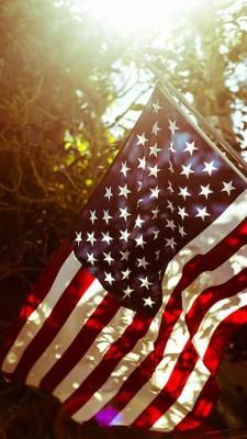 American Flag Wallpaper Iphone American Flag Wallpaper Us Flag 640x960 Wallpaper Teahub Io