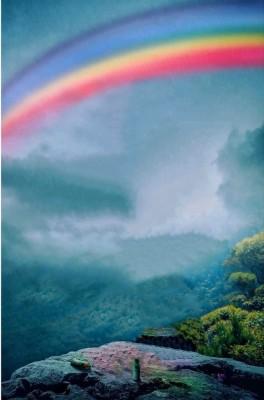 Cb Background Background For Edits Picsart Background Editing Edit Hd Background Png 1080x1294 Wallpaper Teahub Io