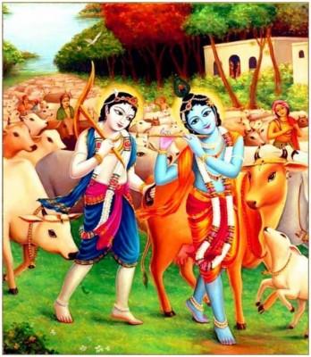 365 3654055 whatsapp dp wallpaper bal cute krishna hd krishna