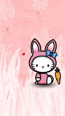 45 451536 lucu wallpaper kelinci pink