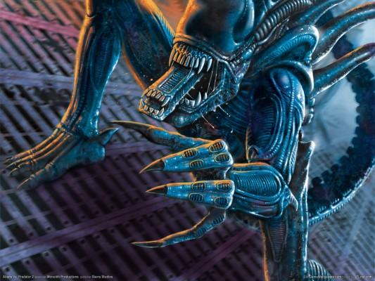 Aliens Vs Predator Xbox 360 wallpaper - 135490  |Alien Vs Predator Xbox 360 Wallpaper