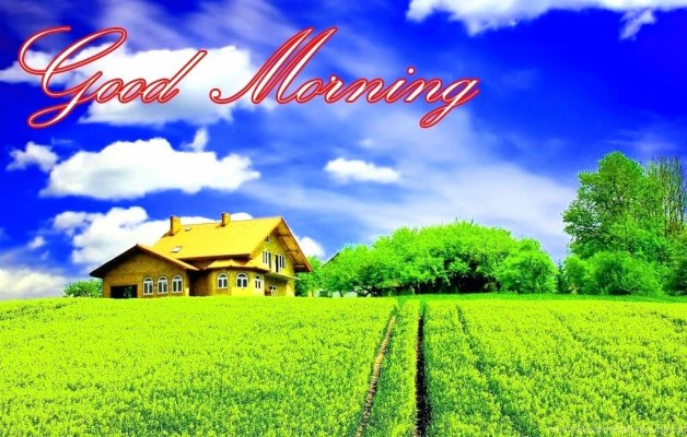 Good Morning Nature Images 3d Cool Winsome Beautiful Good Morning Have A Nice Day 835x577 Wallpaper Teahub Io
