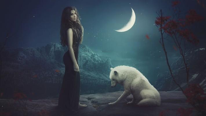 Wolf Moon Wallpaper Hd 1280x720 Wallpaper Teahub Io