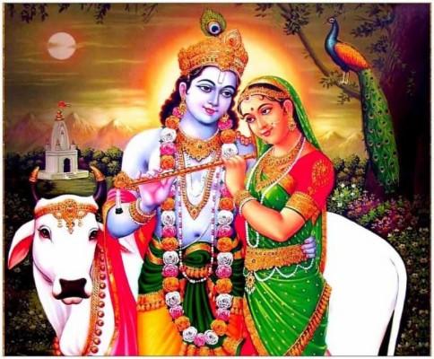 9 92541 whatsapp dp cow wallpaper shri love radha desktop