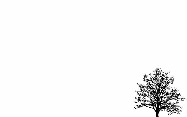 95 956605 2560x1600 minimalistic simple background trees white desktop kpop